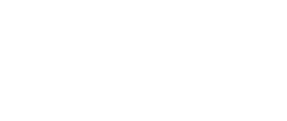 Time to Fly Logo
