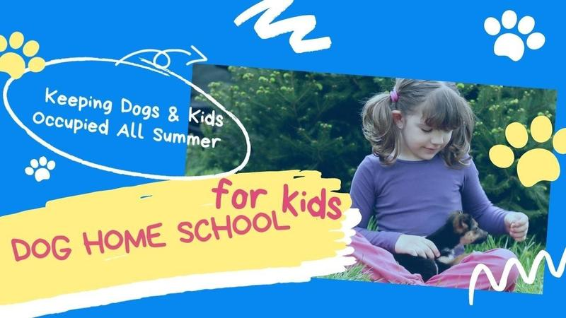 Dog Home School for Kids