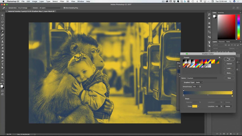 Maternal Monkey Photoshop Composite Course